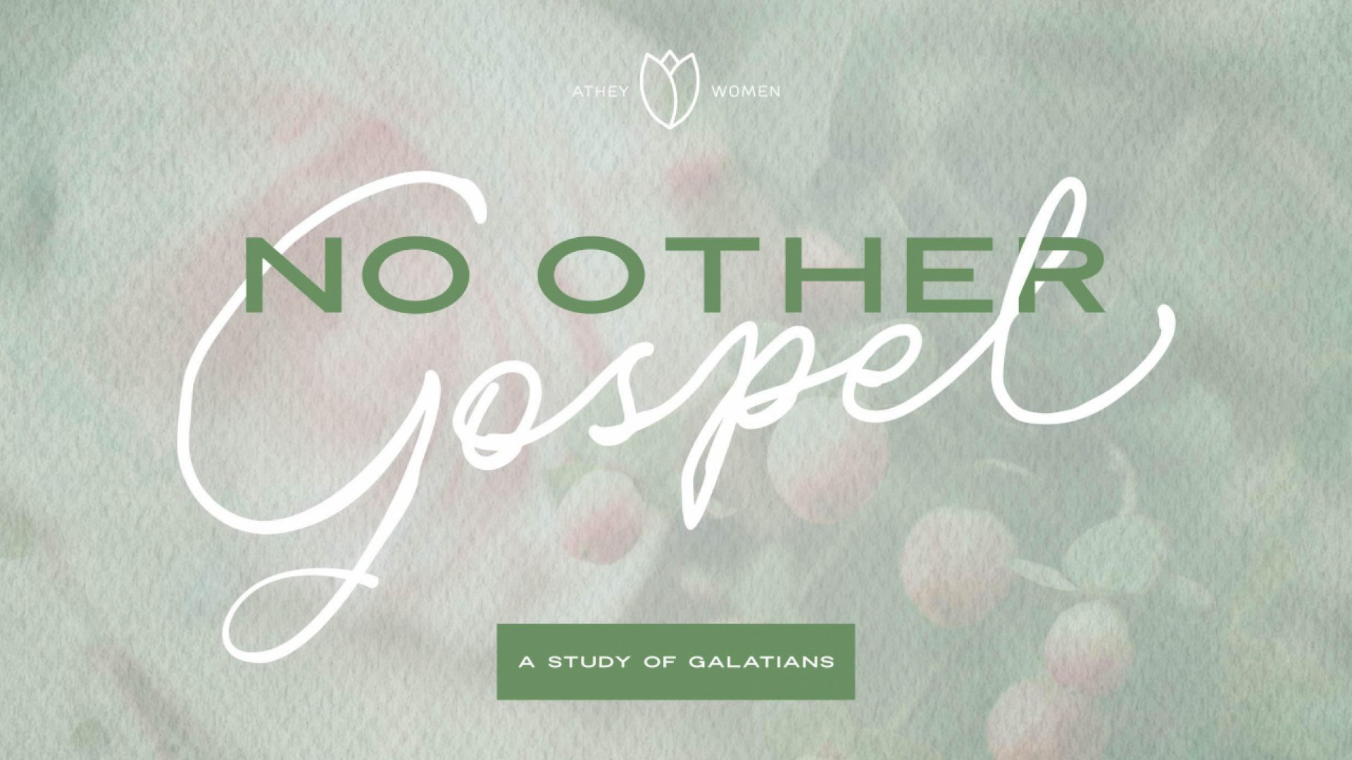 Teaching artwork for No Other Gospel: A Study of Galatians