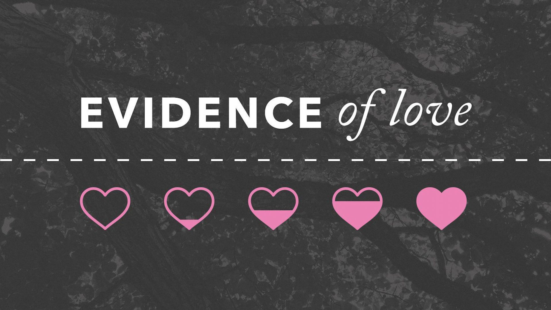 Teaching artwork for Evidence of Love