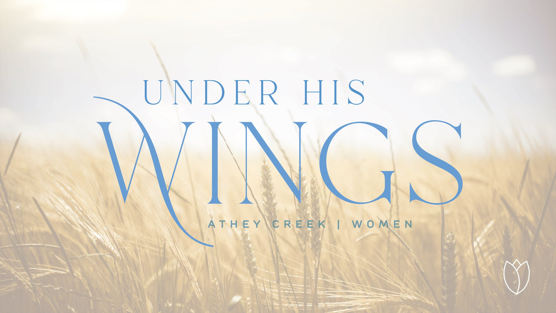 Poster forUnder His Wings | No Turning Back