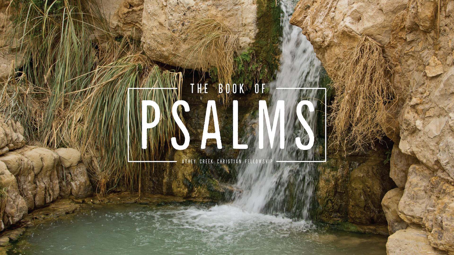 Poster forThrough the Bible (Psalms 31-32)
